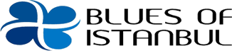 Araç Asansörü Platformu Yük Asansör Platformu Blues Of İstanbul Yapı A.Ş.